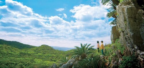 沖縄 パワースポット 大石林山